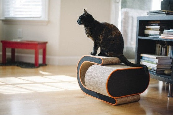 Arty Cat Scratcher