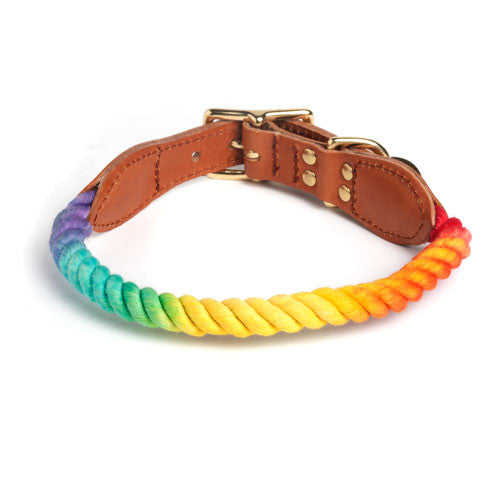 Prismatic Ombre Rope & Leather Collar