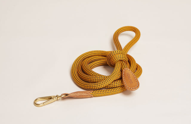 Howlpot Leash in Yellow Jacket