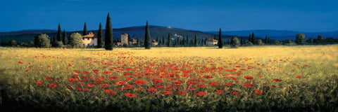 Tuscan Panorama Poppies
