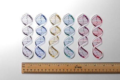 DNA Vinyl Sticker - Sandra Black Culliton
