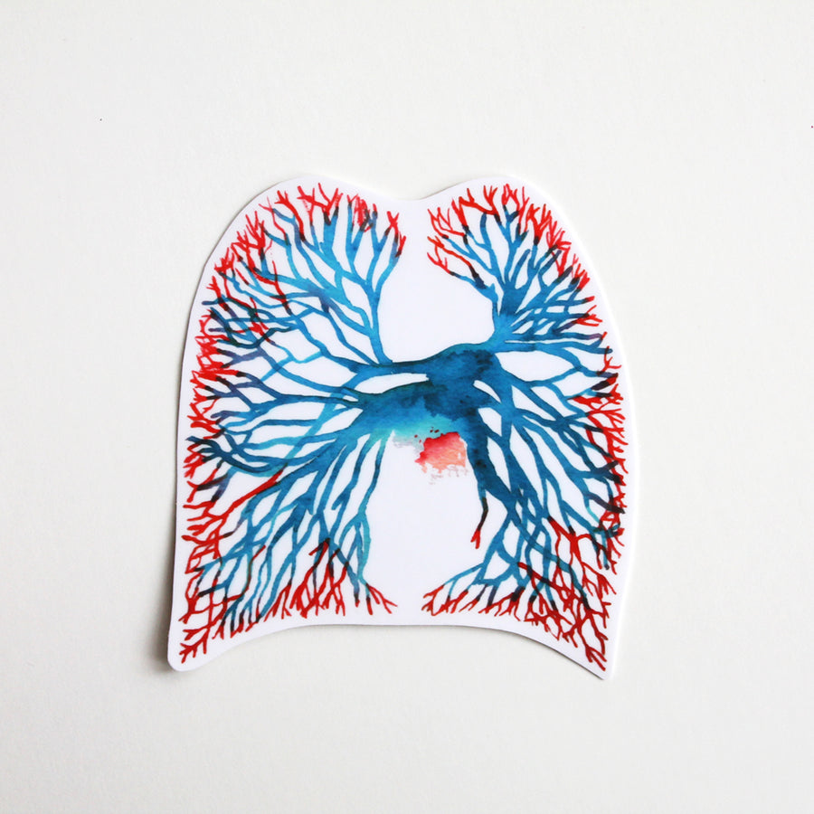 Angiogram Vinyl Sticker - Sandra Black Culliton