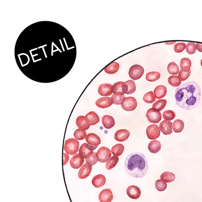 Blood Smear 3 - Sandra Black Culliton
