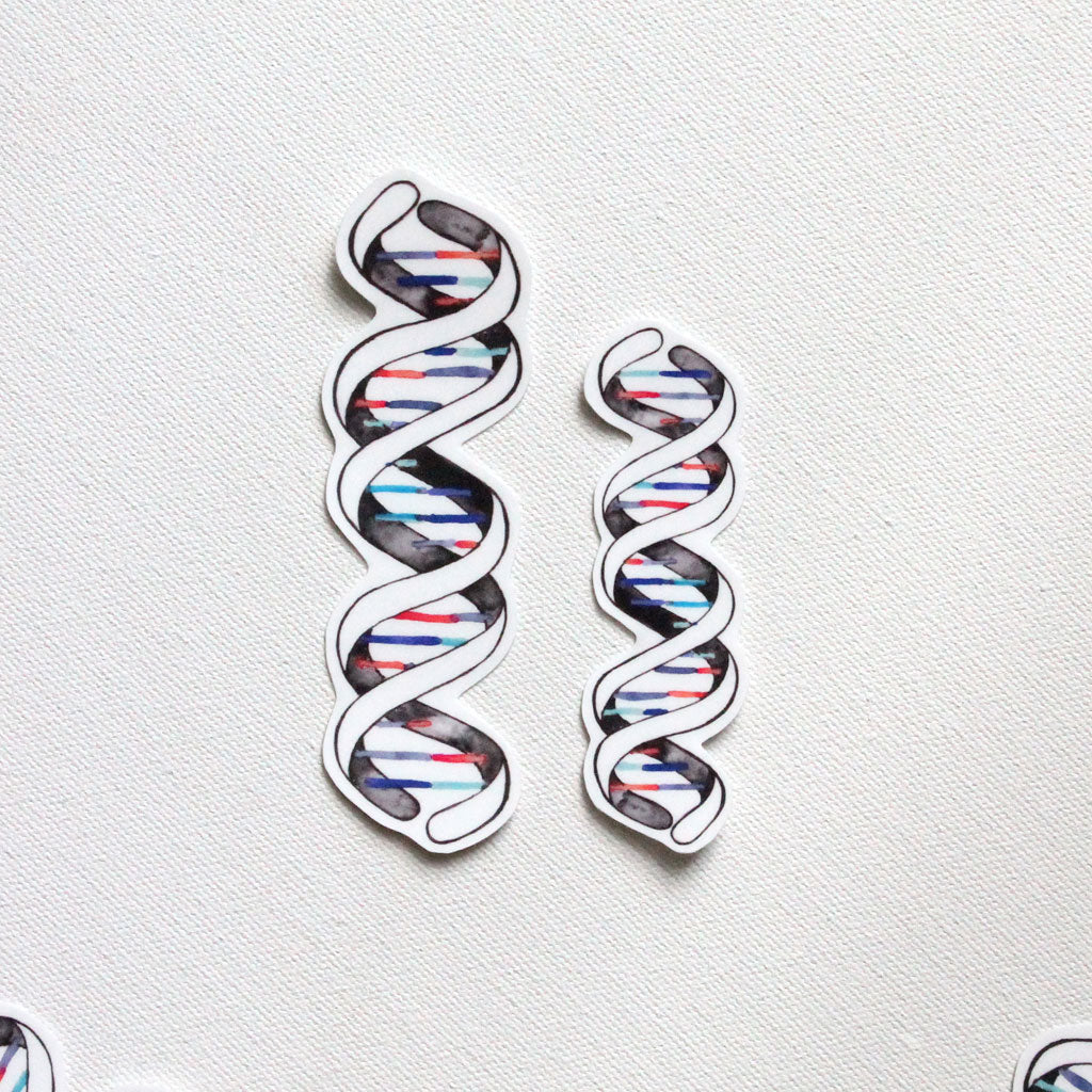 DNA Double Helix Vinyl Sticker - Sandra Black Culliton