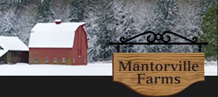 Mantorville Farms