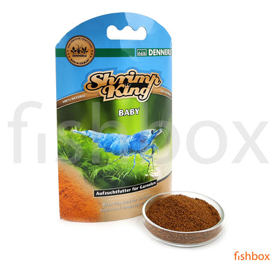Shrimp King Baby - fishbox