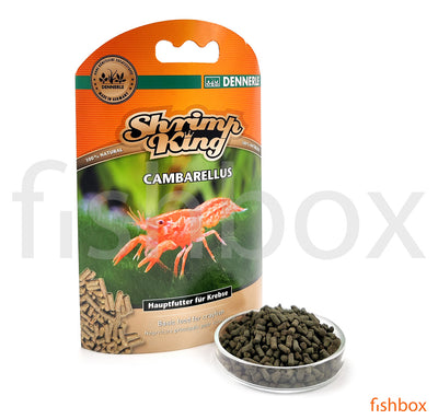 Shrimp King Cambarellus CPO - fishbox