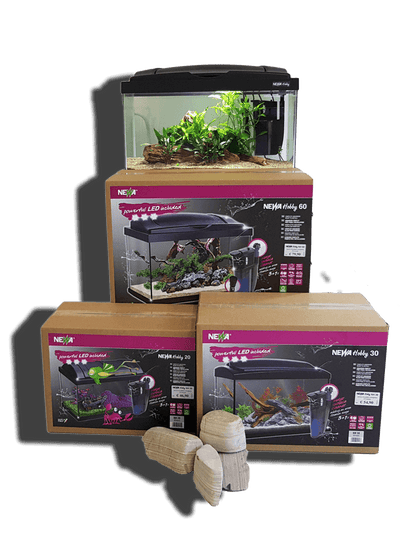 Hobby - fishbox