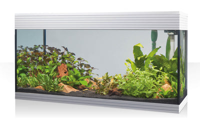 Pure XL LED - fishbox