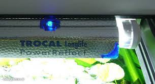 TROCAL Longlife Power Reflect za T8 in T5 - fishbox