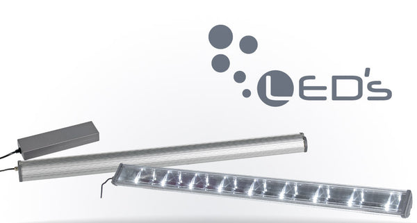 LED's - fishbox