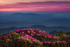 4 Interesting Facts About the Appalachian Mountains
