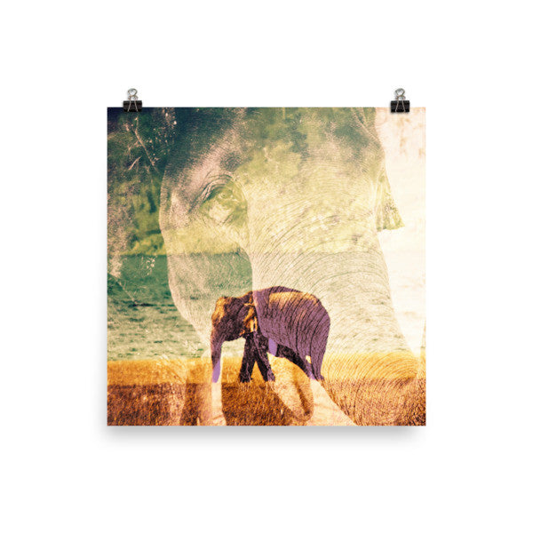 Dreaming Elephants Family Poster