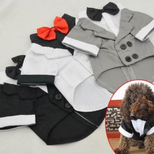 Wedding Tuxedo Western Style Pet Suit