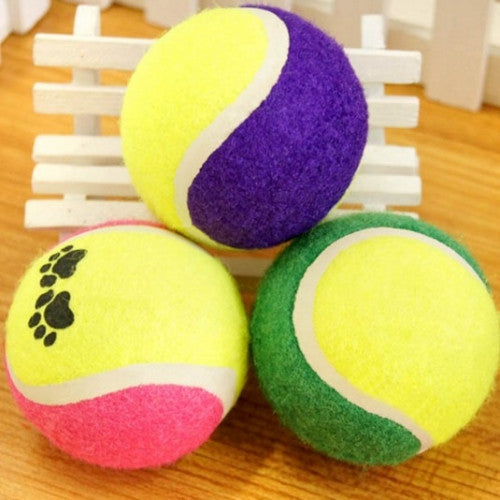Cute Pet Tennis Balls Run Play Chew Toys