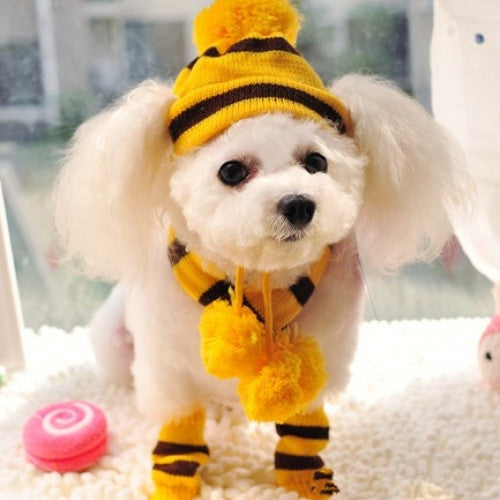 Striped Hat, Scarf and Socks Winter Pet  Accessories
