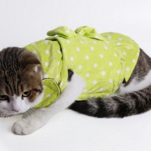 Cotton Knot Dot Pattern Warm Pet Clothes