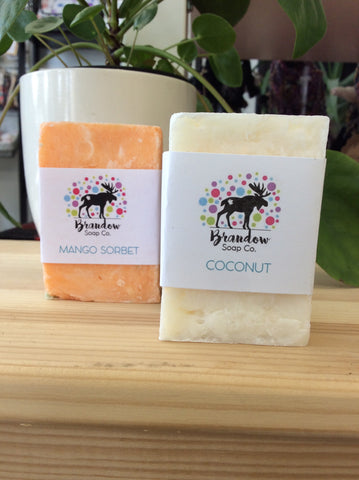 Brandow Soap Co - Shampoo Bars