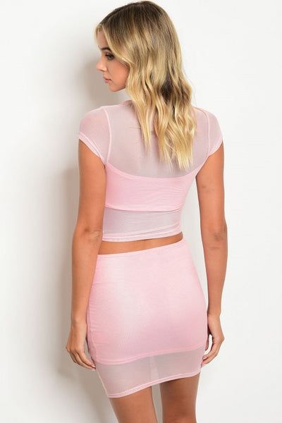 'Pretty In Pink' Ruched Mesh Top and Skirt Set - Pink