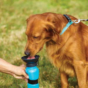 Travel Dog Bottle