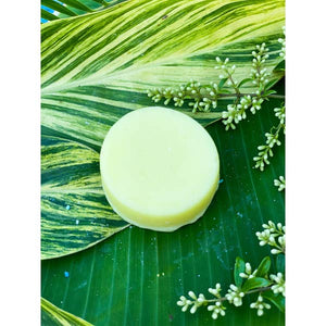 Conditioner Bar - Sweet Macaroon
