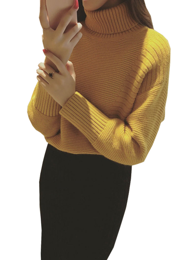 Women's Sweater Turtle Neck Solid Color Slim Top
