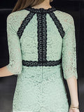 Women's Dress O Neck Half Sleeve Lace Patchwork Celebrity Sheath Dress