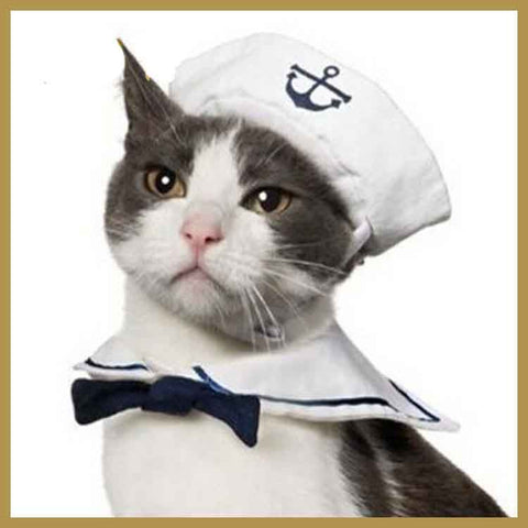 Funny Cat Hat and Cape Sailor Costume - Suit  with Hat and Bow Tie for Cat