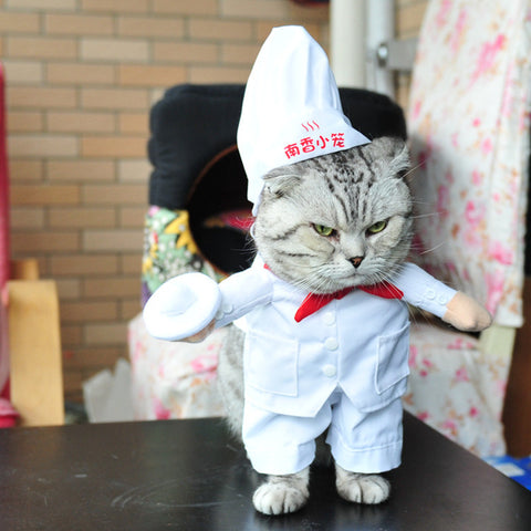 Chef Style Pet Dog Clothes Cat Costume Dog Supply