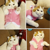 Pet Clothes For Cat Costume |Warm Cute Pink Rabbit Style Products For Cats.