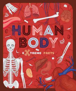 Human Body (Paperback) Childrens book 9781912502332
