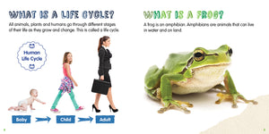 Frog Childrens book