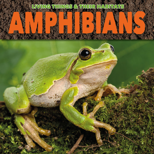Amphibians Childrens book 9781912171774