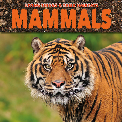 Mammals Childrens book 9781912171804