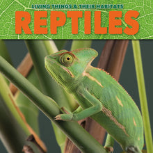 Load image into Gallery viewer, Reptiles Childrens book 9781912171828