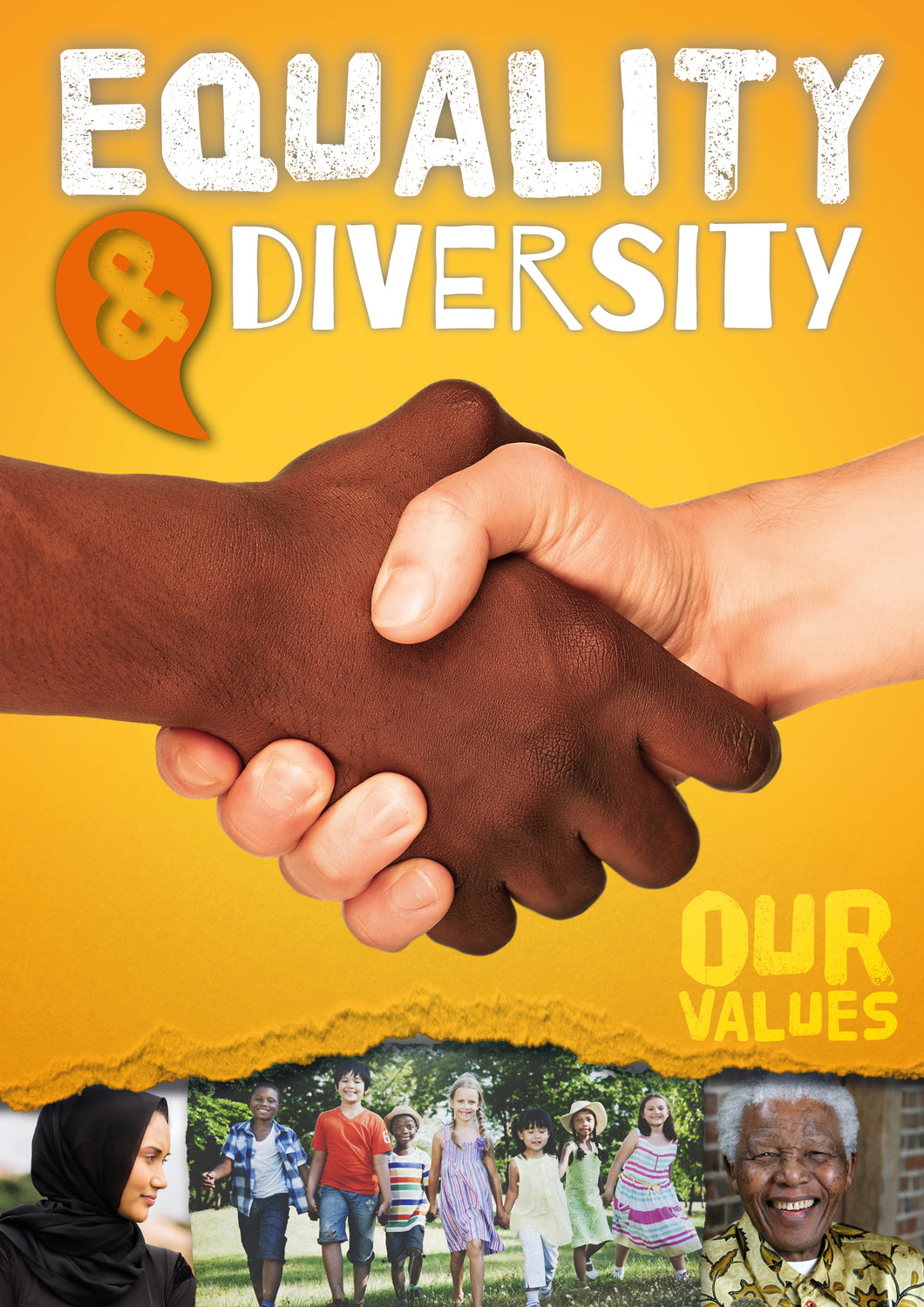 Equality and Diversity (Paperback)