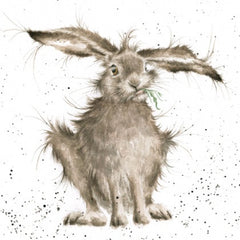 Wrendale Designs Hare Brained Greetings Card, Blank cards