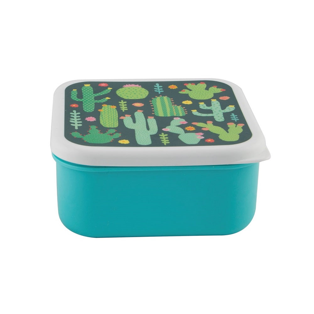 Colourful Catcus Lunch Box