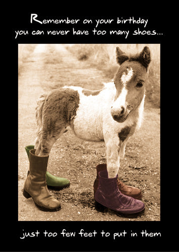 Donkey in boots