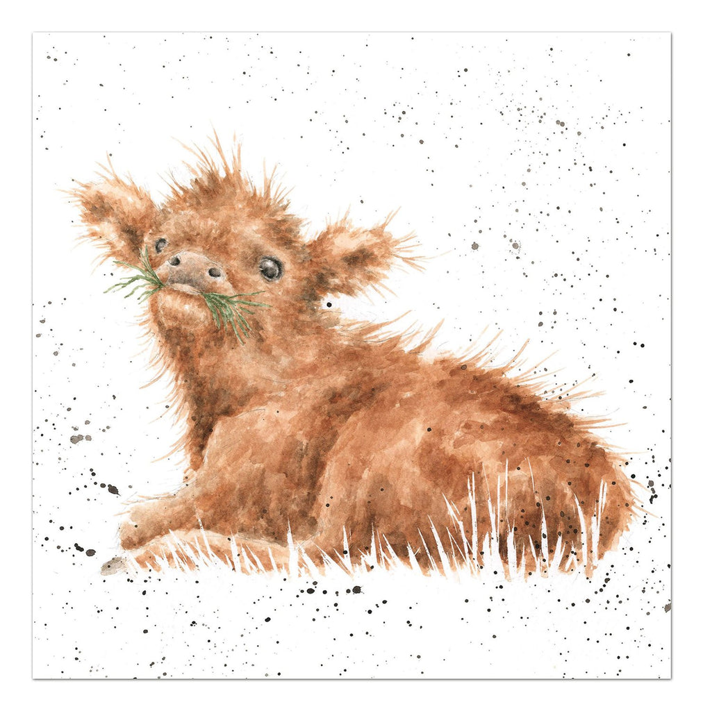 Wrendale Designs Wee Hamish Card, Blank cards