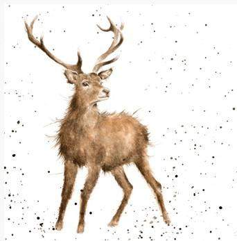 Wrendale Designs Wild at Heart Stag Greetings Card, Blank cards
