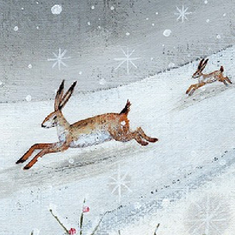 Hares In Snow Charity Cards
