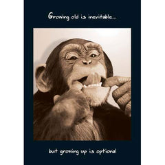Monkey Growing Old Inevitable, All Birthday Cards