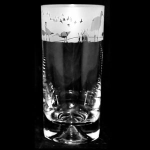 Wading Birds Hand Decorated Glass Highball Tumbler