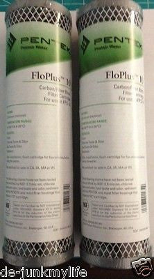 2 New Pentek FloPlus-10, 0.5 Micron Carbon Block Cartridge 455903-43 - Healthy Bowls