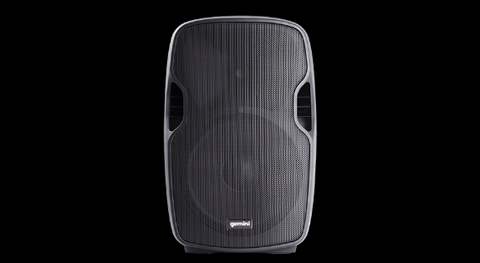 Gemini 8 Inch Powered Bluetooth Speaker