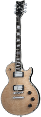 Schecter Solo II Custom Electric Guitar (Gloss Natural)