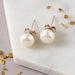 Freshwater Pearl Stud Earrings