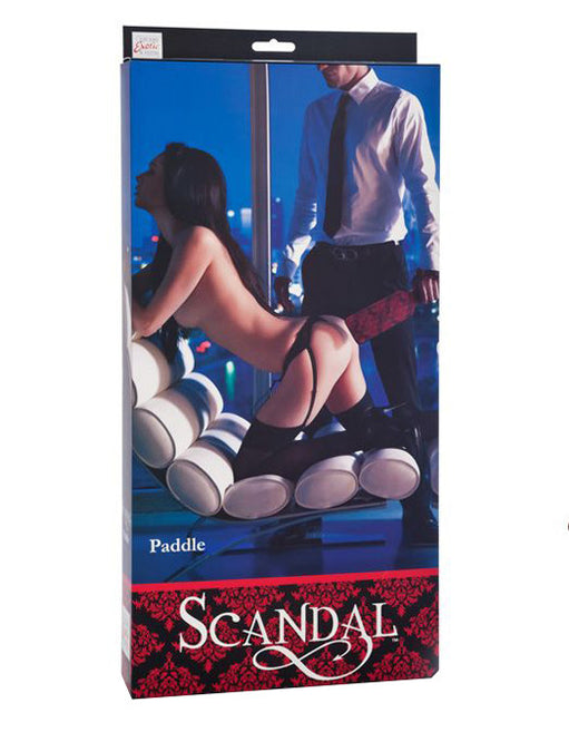 Scandal Paddle Box - Featured Image