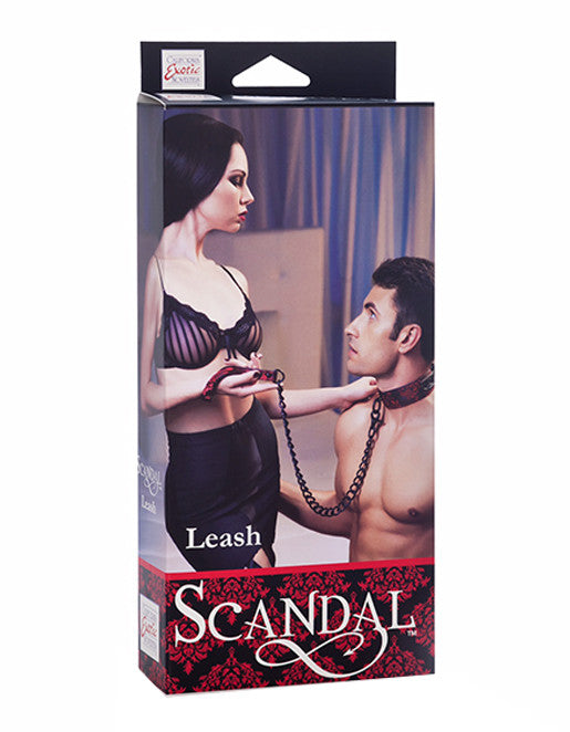 Scandal Metal Chain Leash
